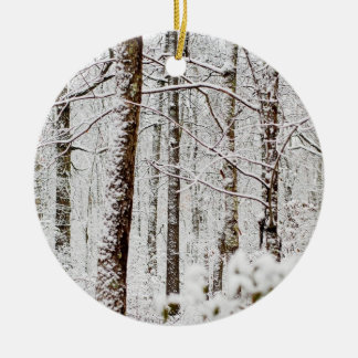 Snowy Pocono Wonderland Christmas Ornament