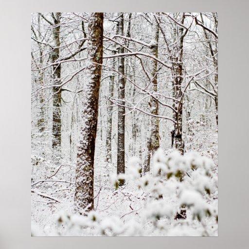 Snowy Pocono Wonderland Print