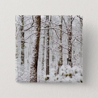 Snowy Pocono Woodlands Button