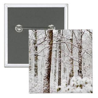 Snowy Pocono Woodlands Buttons