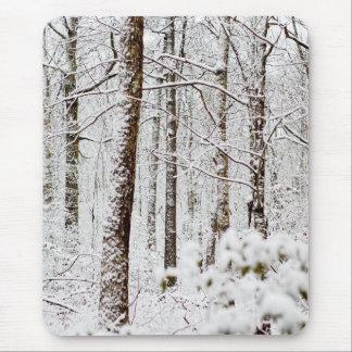 Snowy Pocono Woodlands Mouse Pad