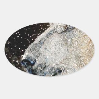 Snowy Polar bear Oval Sticker