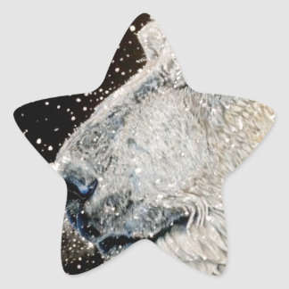 Snowy Polar bear Star Sticker