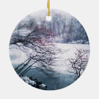 Snowy Pond in Central Park Ceramic Ornament