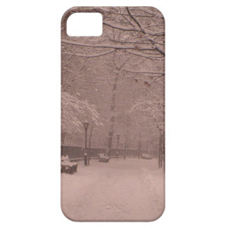 Snowy Prospect Park Cover For iPhone 5/5S