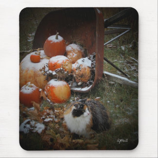 Snowy Pumpkins and Calico Cat Mouse Pad