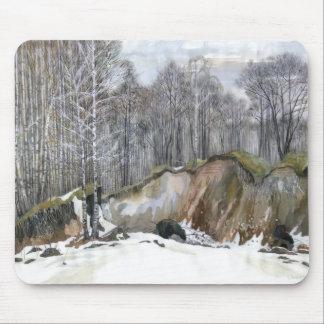Snowy ravine mouse pad
