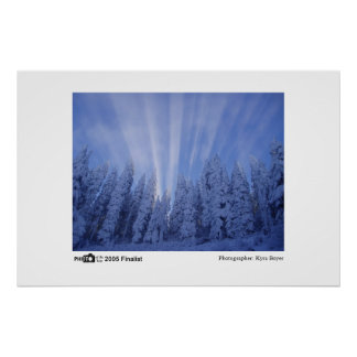 Snowy Rays - Photo of the Year 2005 Finalist Print