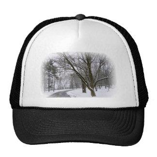 Snowy Road Merchandise Trucker Hat