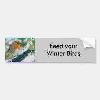 Snowy Robin Bumper Sticker