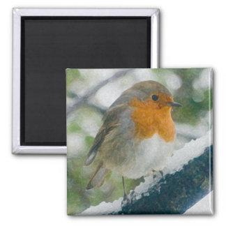 Snowy Robin Magnet
