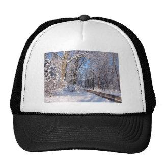 Snowy Rural Michigan Trucker Hat