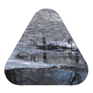 Snowy Saco River and Forest Pieladium Speaker