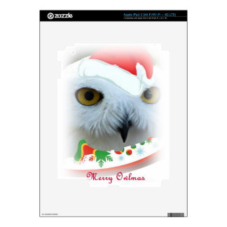 snowy Santa owl eyes iPad 3 Decals