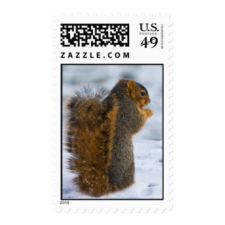 Snowy Snack Postage Stamps