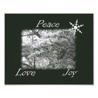 Snowy Spruce Tree Peace Love Joy Photo