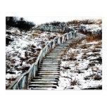 Snowy Staircase Postcard