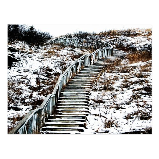 Snowy Staircase Postcard