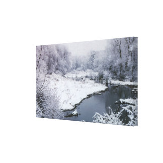 Snowy stream forest Stretched Canvas Print