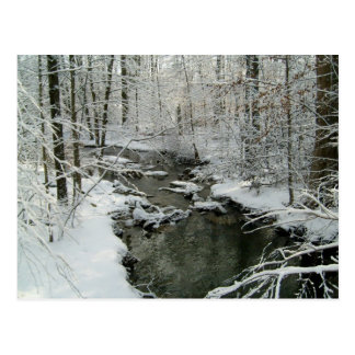 Snowy Stream Post Card Personalized Christmas