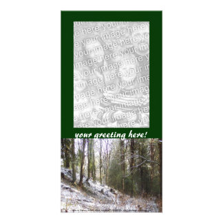 Snowy Sunlit Forest Glade Photo Card