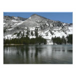 Snowy Tenaya Lake Yosemite National Park Photo