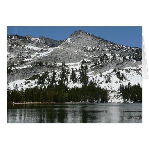 Snowy Tenaya Lake Yosemite National Park Photo Card