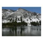 Snowy Tenaya Lake Yosemite National Park Photo Perfect Poster
