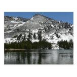 Snowy Tenaya Lake Yosemite National Park Photo Postcard