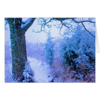Snowy Trail 1 Card