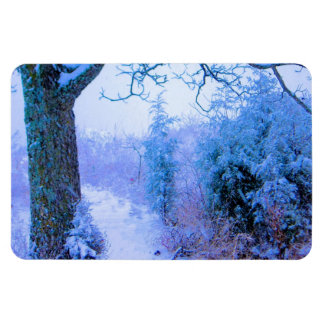 Snowy Trail 1 Rectangular Magnets