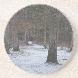 Snowy Trail & Bridge Coaster