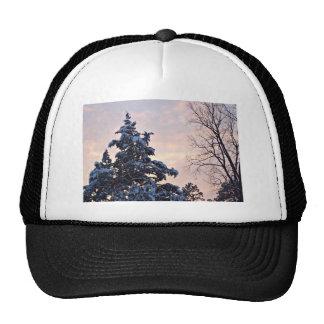 Snowy tree and sky scene trucker hat