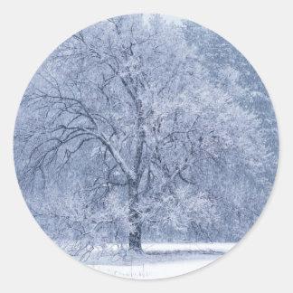 Snowy Tree Winter Frozen Scene Classic Round Sticker