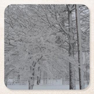 Snowy Trees Coasters 001