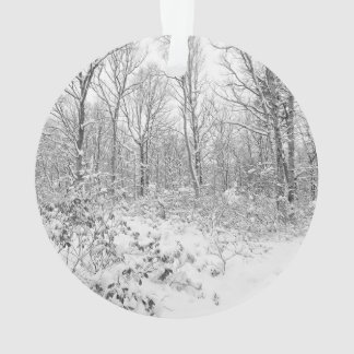 Snowy Trees in the Poconos Ornament