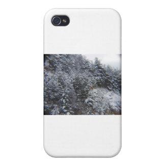 Snowy Trees iPhone 4/4S Case