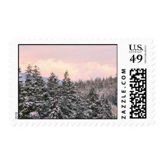Snowy Trees Landscape Photo Postage