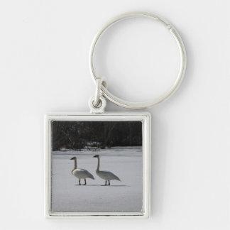 Snowy Trumpeter Swans Keychain