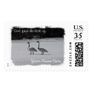 Snowy Trumpeter Swans Stamp