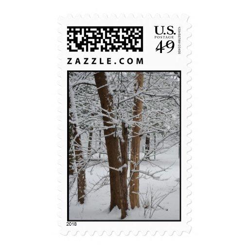 snowy trunks postage stamp