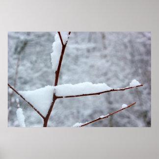 Snowy Twig 6 Poster
