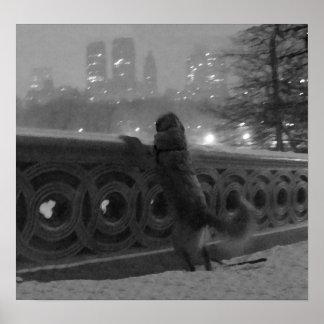 Snowy View-Bow Bridge in Central Park Canvas Print