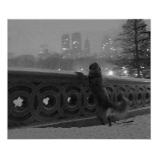 Snowy View from Bow Bridge in Central Park Canvas Print