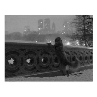 Snowy View from Bow Bridge Postcard