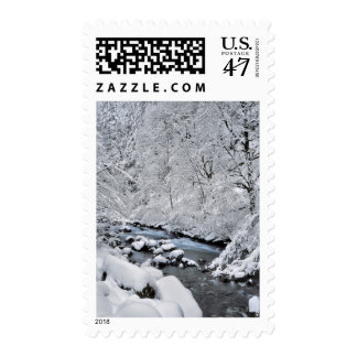 Snowy white creek scenic, Oregon Postage