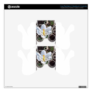 Snowy White Crocus Blossom PS3 Controller Skins