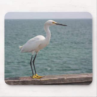 Snowy White Egret Mouse Pad