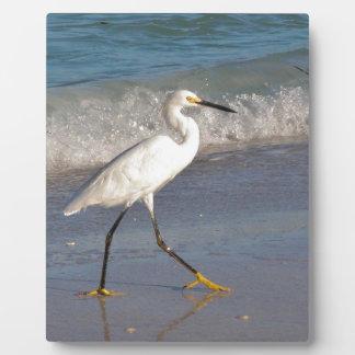 Snowy White Egret on the Beach Plaque