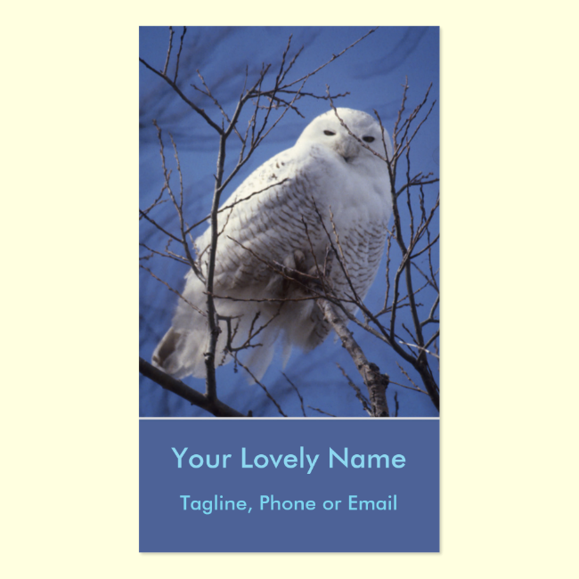 Snowy White Owl, White Arctic Bird, Sapphire Sky Double-Sided Standard Business Cards (Pack Of 100)